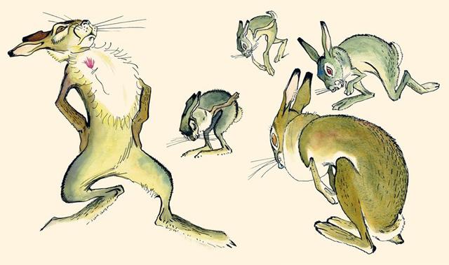 картинка сказка про храброго зайца длинные уши косые глаза николай