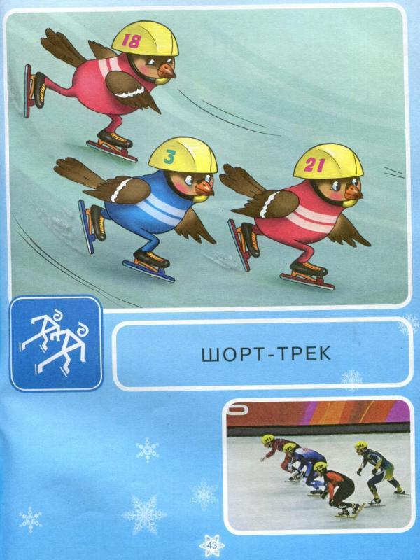 Зимние виды спорта для детей дошкольного возраста в картинках