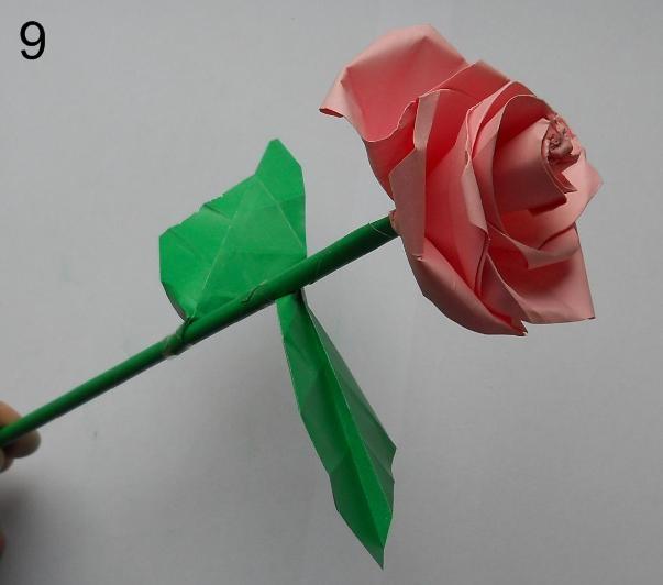 Как сделать объемную розу из бумаги фото 889