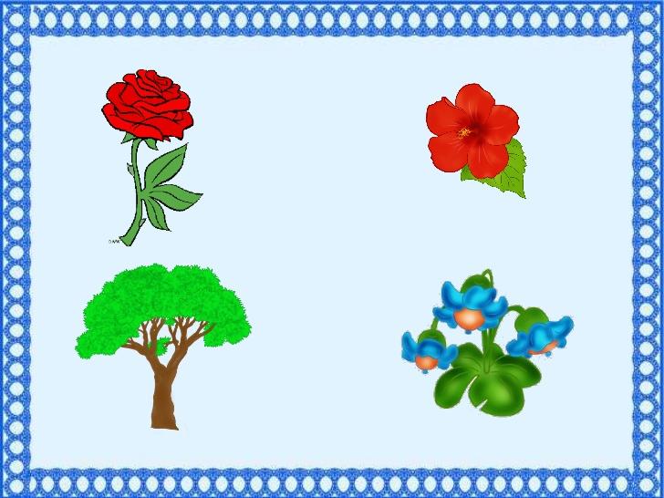 прикольні картинки найди лишнее сад менее, даже