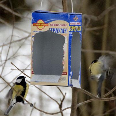 Как сделать простую кормушку для птиц фото 193