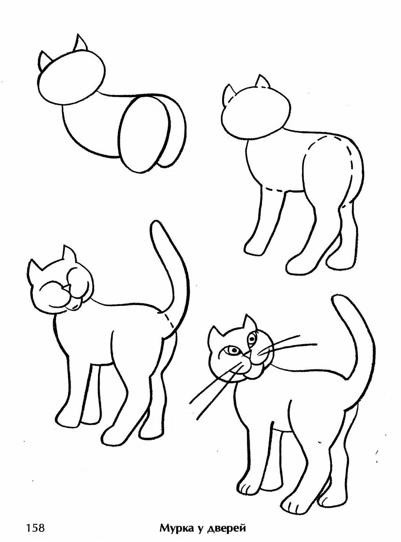 картинки про кошек чтобы срисовать
