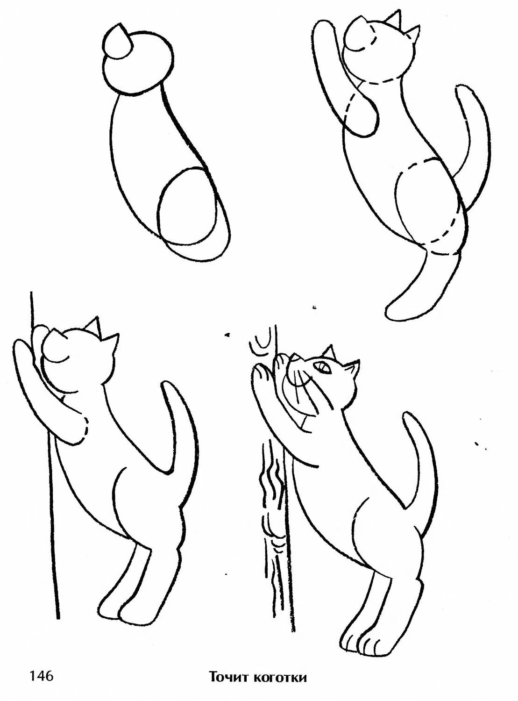 Картинки как нарисовать котика легко и просто