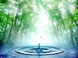 Приснилась вода во сне (сонник, значение сна)